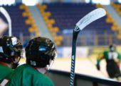O hokeji a obraze Slovenska