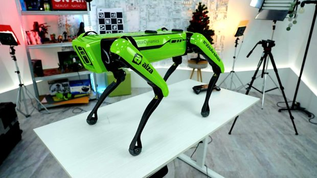 Alze pomáha robotický pes Dášenka