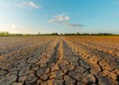 Kaufland aLidl chcú významne znížiť produkciu prevádzkových emisií CO2